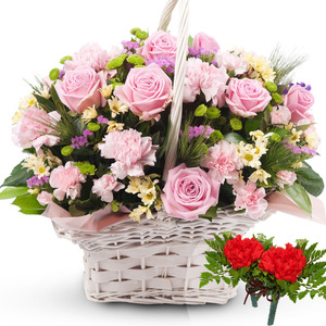 B형 핑크카네이션혼합꽃바구니+코사지2개