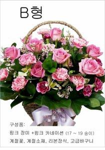 B형 핑크카네이션혼합꽃바구니