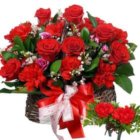 A형 빨강카네이션혼합꽃바구니+코사지2개
