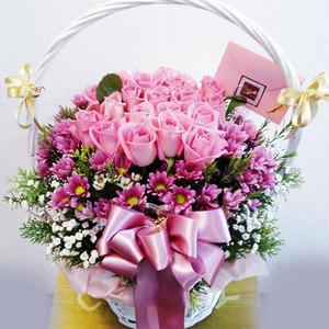 핑크로즈안개(꽃바구니)